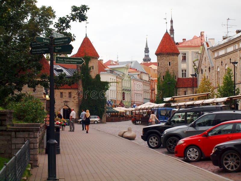 Лето Таллин в раннем утре стоковое фото rf