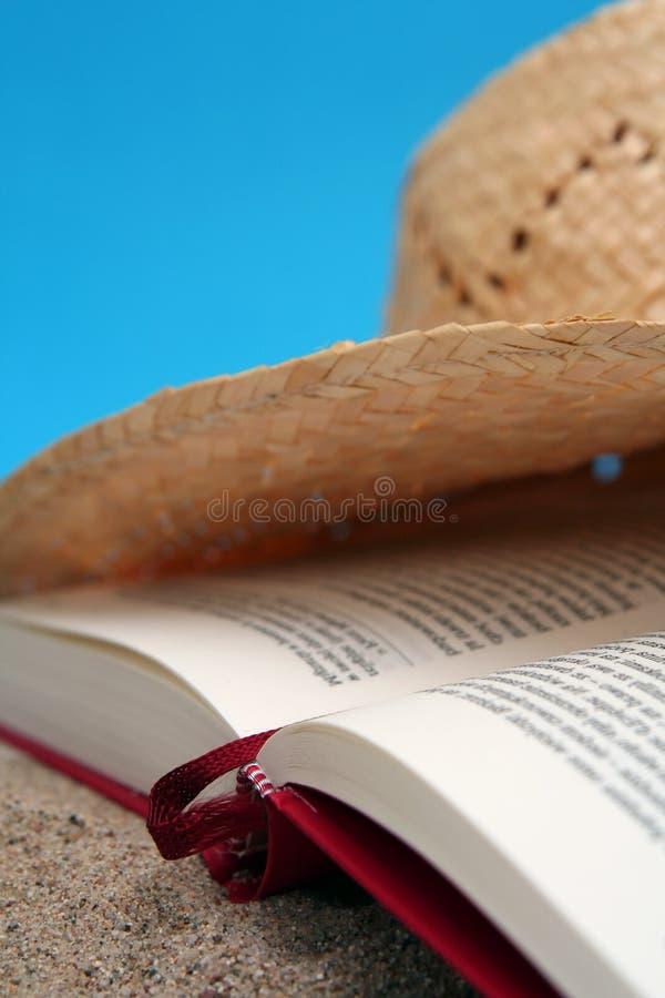 лето чтения стоковые фото