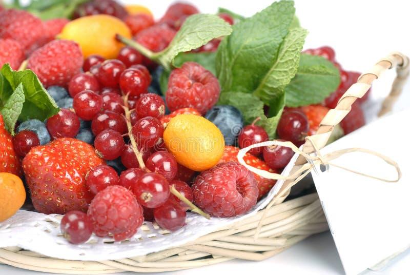 лето ягод стоковое фото rf