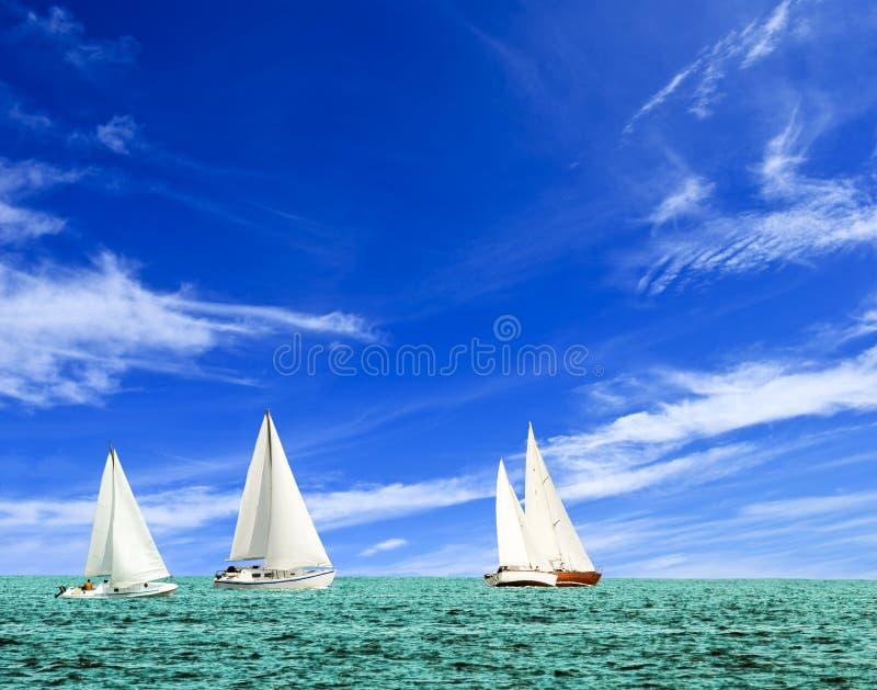 лето regatta стоковые изображения rf