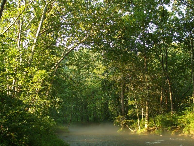 лето scape реки пороха стоковая фотография rf