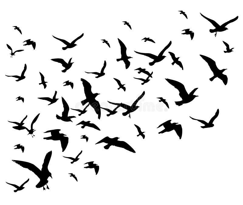 Летящие птицы собираются иллюстрация вектора изолированная на белой предпосылке иллюстрация вектора