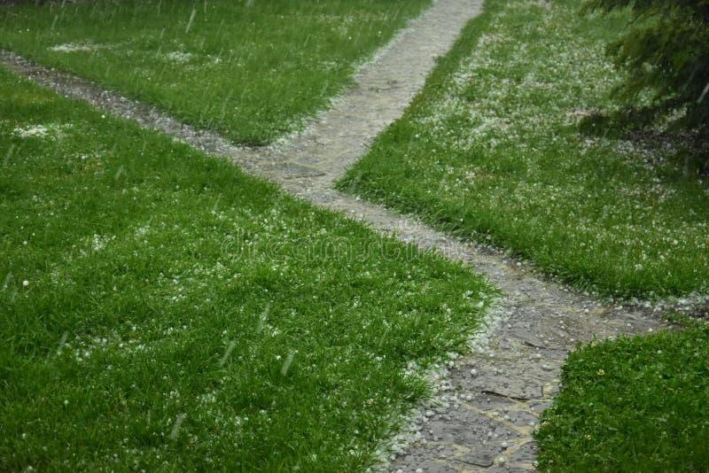 Ледистый hailstorm стоковые фотографии rf