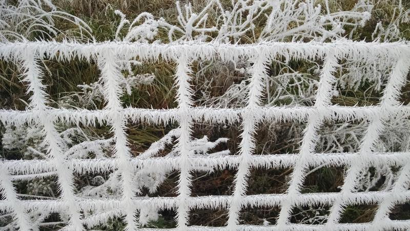 Лед на загородке стоковое фото rf