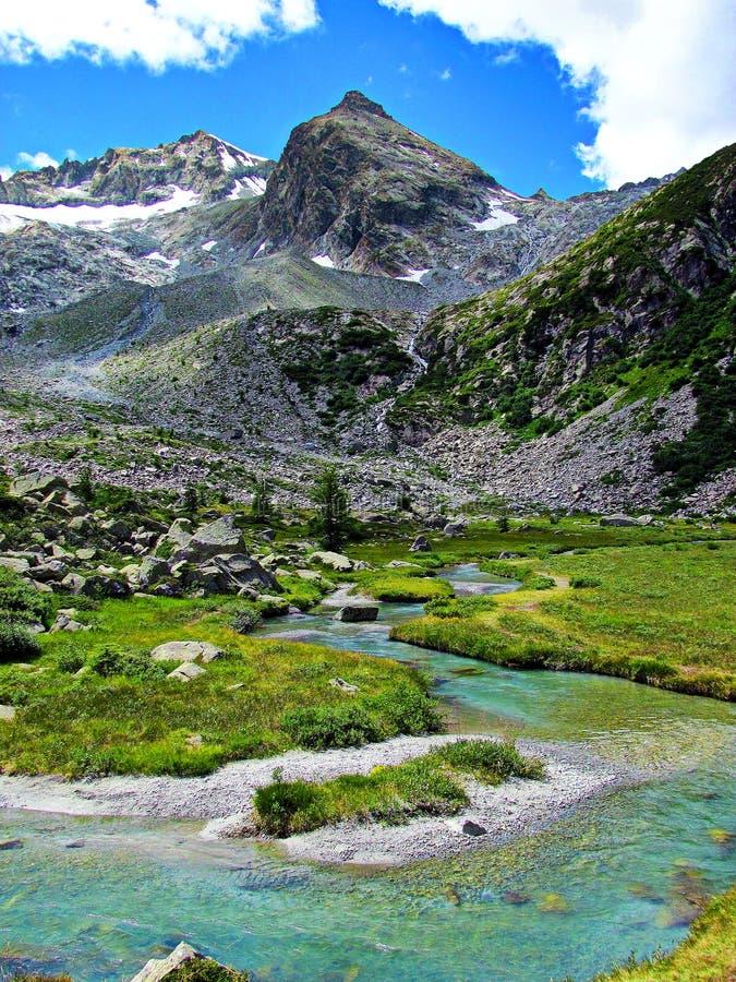 Ледниковая вода потока - итальянка Альпы стоковые изображения