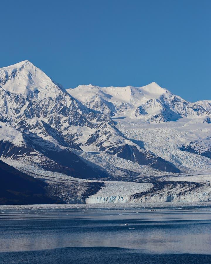 Ледник Гарварда с предпосылкой голубого неба стоковое изображение