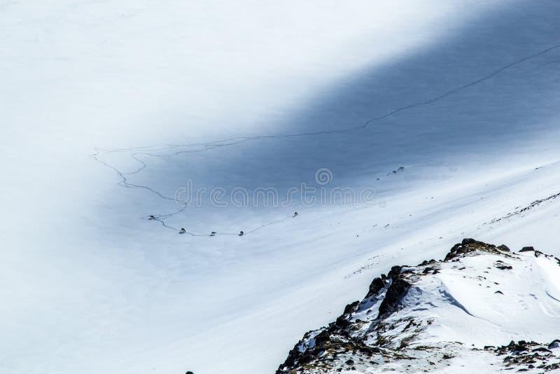 Ледовитая весна в южном Шпицбергене Северный олень на замороженном озере стоковые изображения