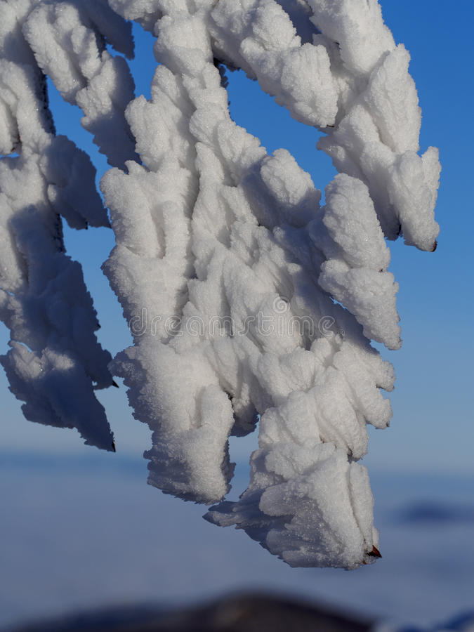 Лед krystal стоковая фотография rf