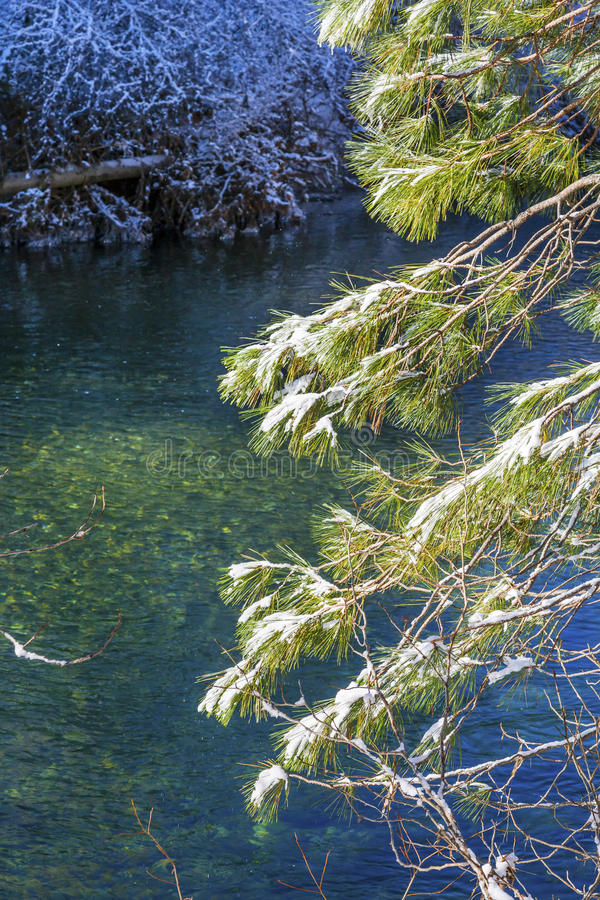 Лед Wenatchee River Valley Leavenworth Washi снега листьев зимы стоковое фото