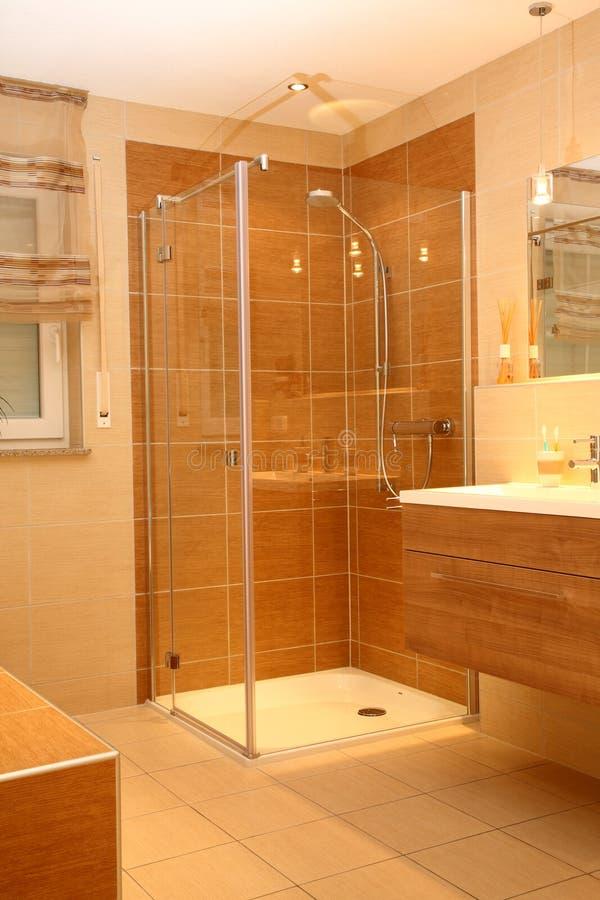 ливень ванной комнаты самомоднейший стоковое изображение rf