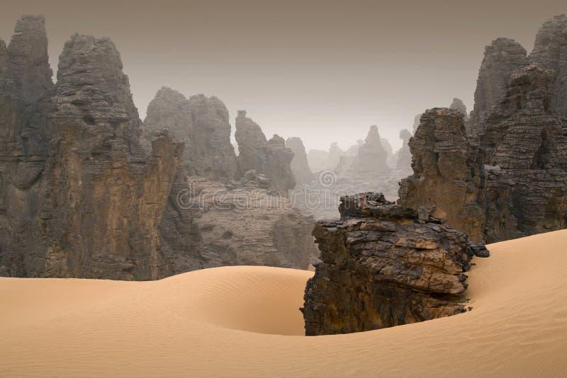 Ливийская пустыня стоковые фотографии rf