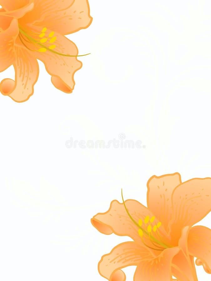 Лилии вектора. бесплатная иллюстрация