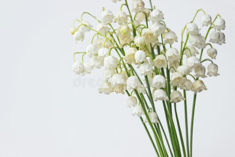 Лилия букета цветков долины на белой предпосылке стоковое фото