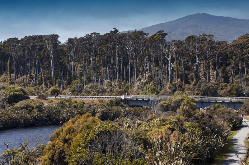 Лиман реки на запасе Tauparikaka морском, Haast, Новой Зеландии стоковая фотография rf