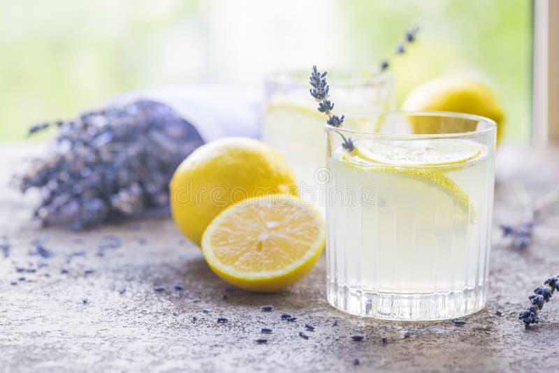 Лимонад с лимонами и лавандой стоковое фото rf