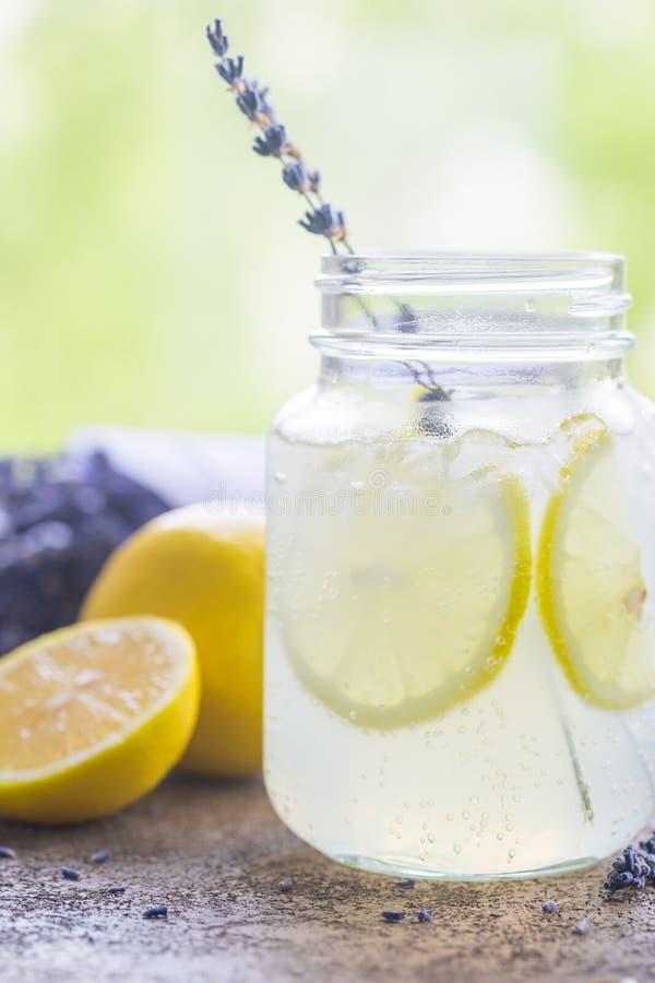 Лимонад с лимонами и лавандой стоковое фото