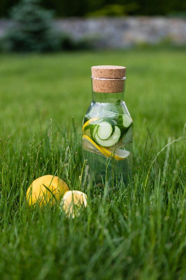 Лимонад лета свежий от лимонов, мяты и огурца Вода вытрезвителя стоковое фото