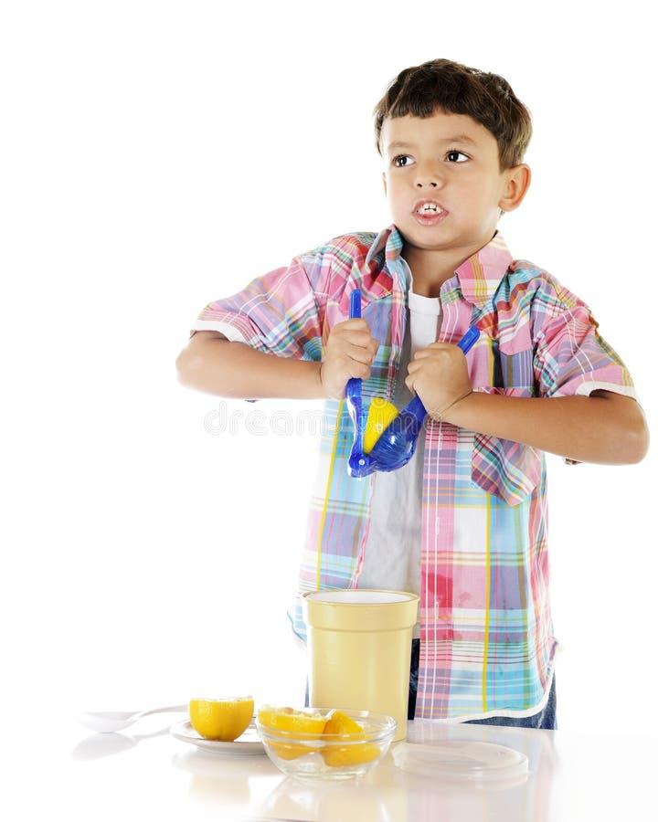 лимоны грубые стоковое фото rf