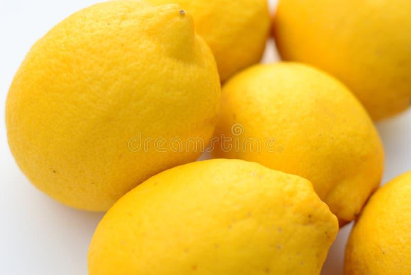 Лимоны, изолированные на белой земле стоковые изображения