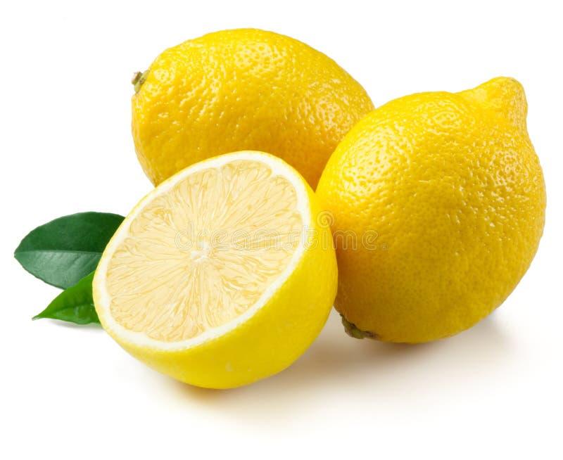 Лимоны изолированные на белой предпосылке стоковое изображение rf