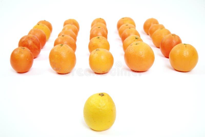 Лимон и апельсины руководителя стоковые изображения