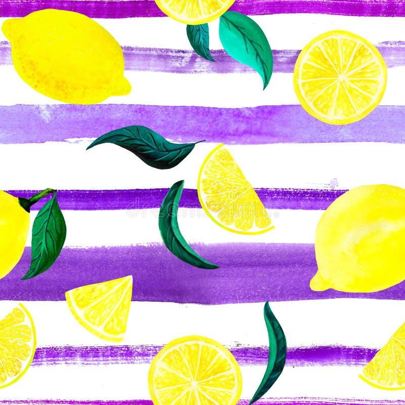 Лимон картины цитруса акварели, безшовная картина с ветвью, ботанической естественной иллюстрацией на белой предпосылке, ультра бесплатная иллюстрация