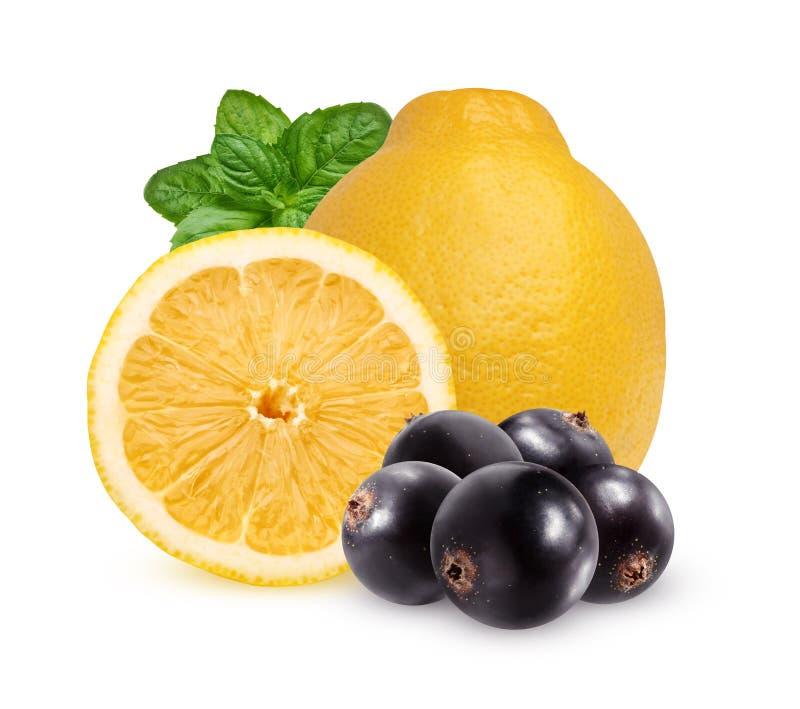 Лимон, листья мяты и blackcurrant, изолированные на белом backgro стоковая фотография rf