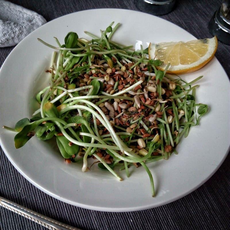 Лимон доброго утра еды зеленый салат стоковое изображение rf