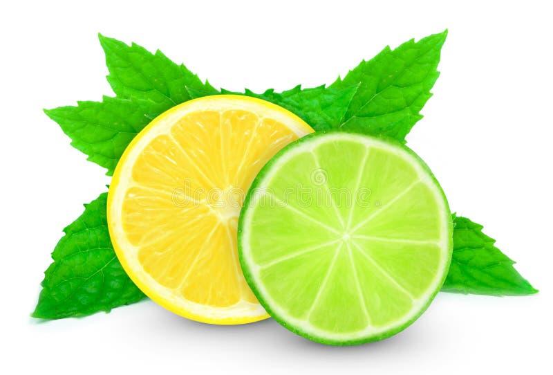 Лимон с куском и мятой известки стоковые изображения rf