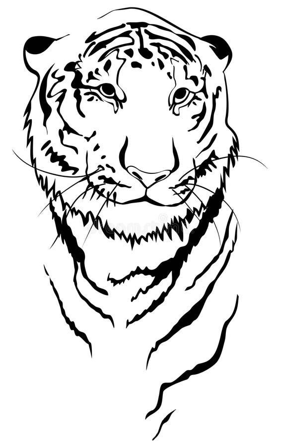 линейный тигр иллюстрация вектора