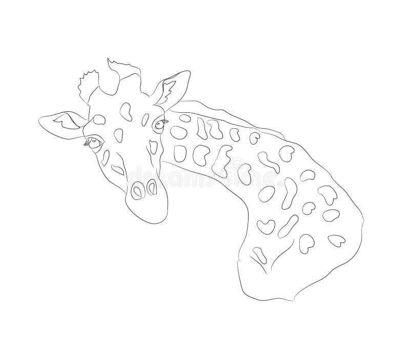 Линии жирафа графические, вектор иллюстрация вектора