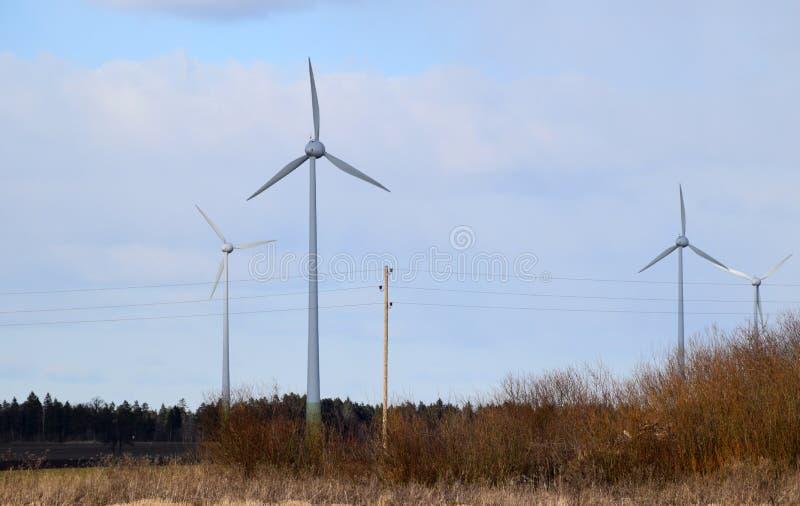 Линии и ветротурбины электропитания в Латвии стоковые изображения rf