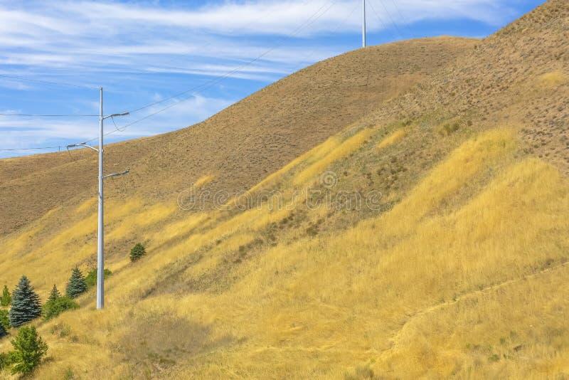 Линии электропередач для пригородных домов на холме стоковое фото rf