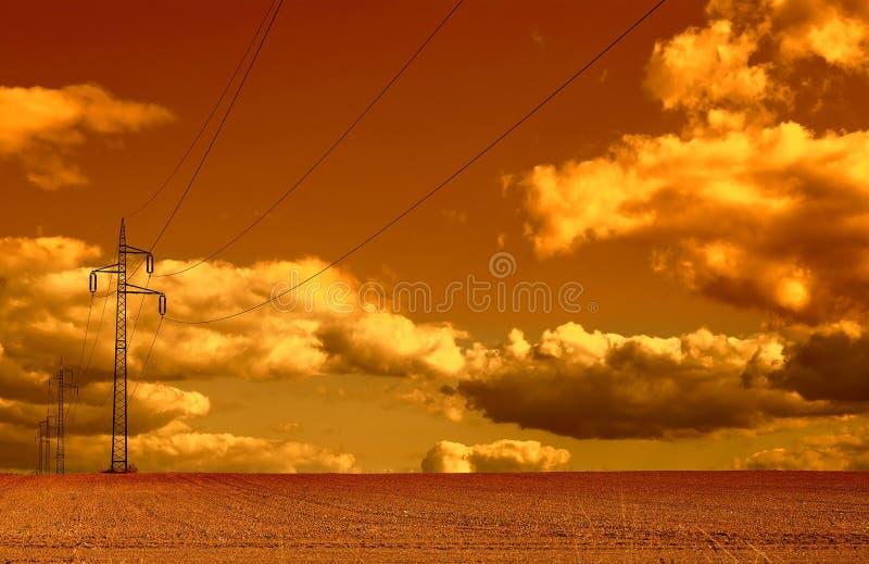 Линии электропередач бежать через пшеничное поле на заходе солнца стоковое изображение
