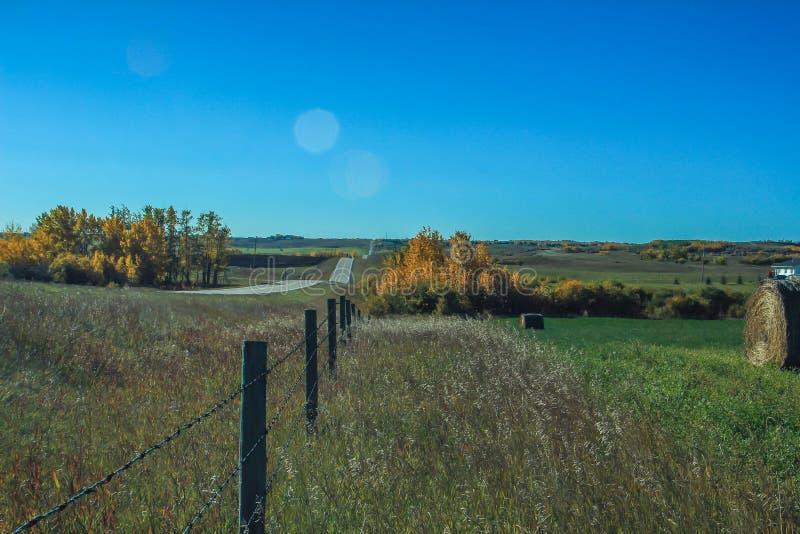 Линия загородки через поле фермеров стоковые изображения rf