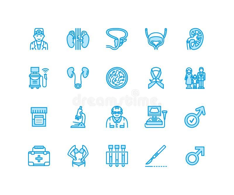 Линия значки вектора урологии плоская Urologist, пузырь, почки, надпочечники, простата Линейные медицинские пиктограммы с бесплатная иллюстрация