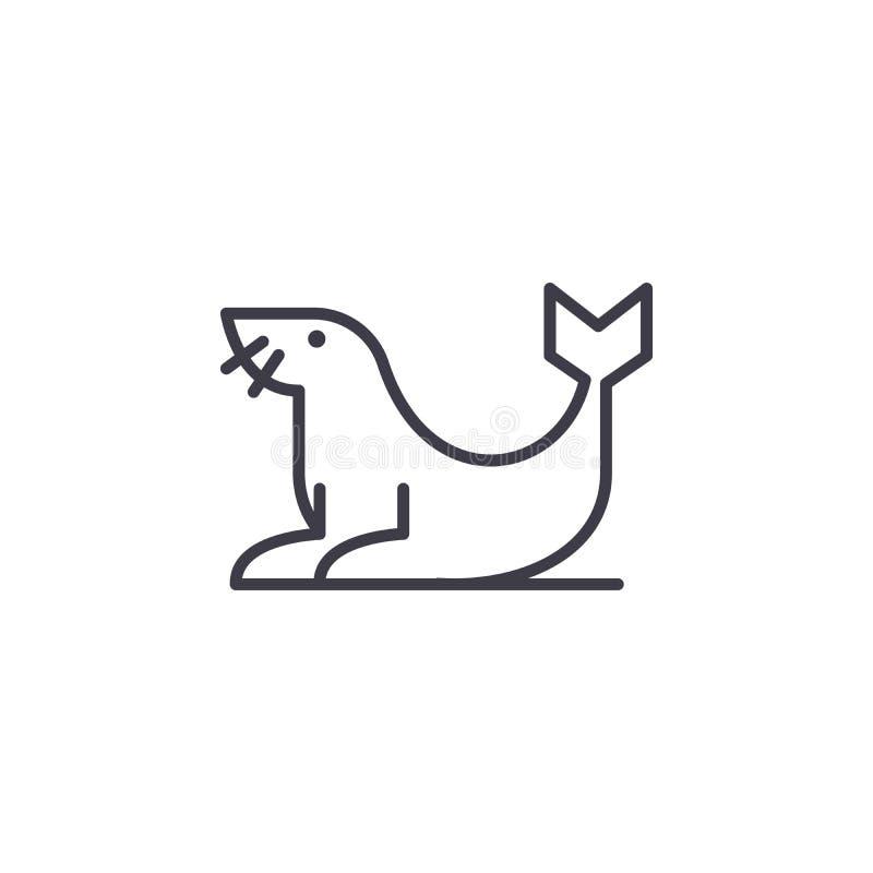 Линия значок вектора морского котика, знак, иллюстрация на предпосылке, editable ходах иллюстрация штока