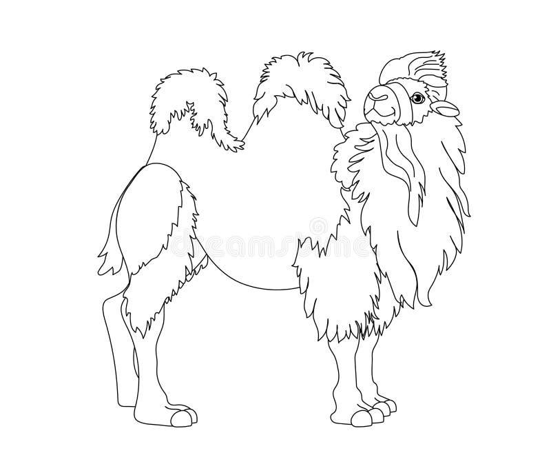 Линия искусство вектора зажима мультфильма животное иллюстрация вектора