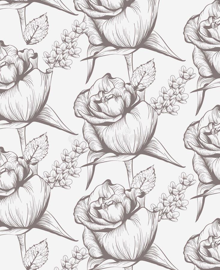 Линия искусство карточки винтажных роз флористическая Красивейшая предпосылка стили графика чертежа руки бесплатная иллюстрация