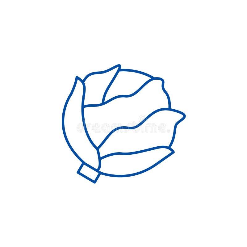 Линия концепция капусты значка Символ вектора капусты плоский, знак, иллюстрация плана иллюстрация вектора