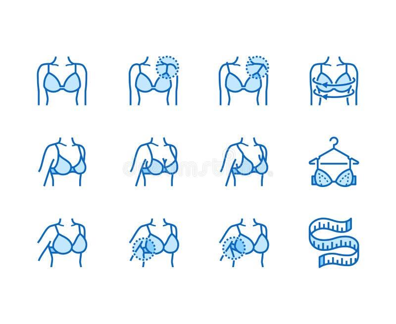 Линия набор женского белья плоская значков Бюстгальтер приспосабливая, измерение груди с измеряя лентой, женским телом в векторе  иллюстрация вектора