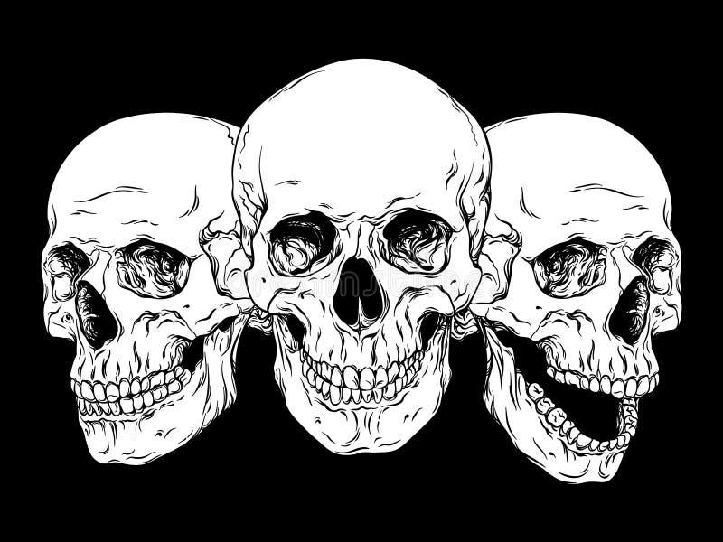 Линия нарисованная PrintHand установленные черепа искусства анатомически правильные человеческие изолировала вектор иллюстрация вектора