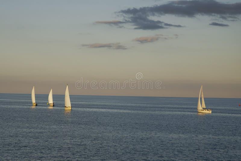 Линия парусников на Lake Michigan стоковое изображение rf