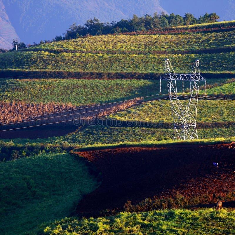 линия электричества стоковая фотография