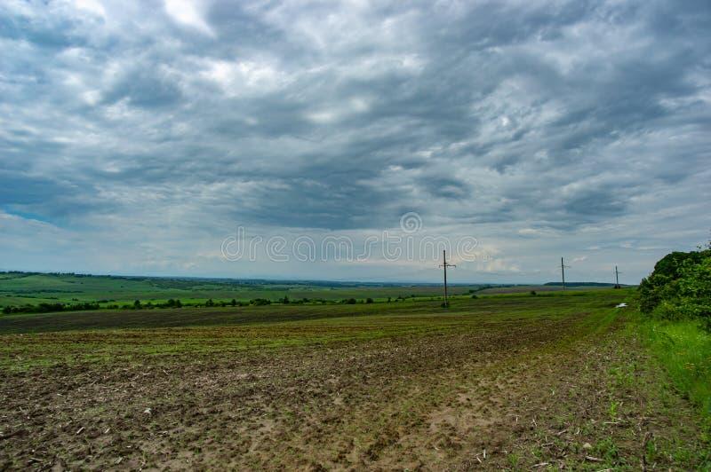 Линия электропередач в зеленом поле стоковые изображения rf