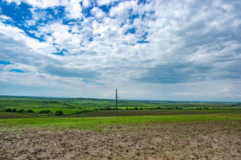 Линия электропередач в зеленом поле стоковые фотографии rf