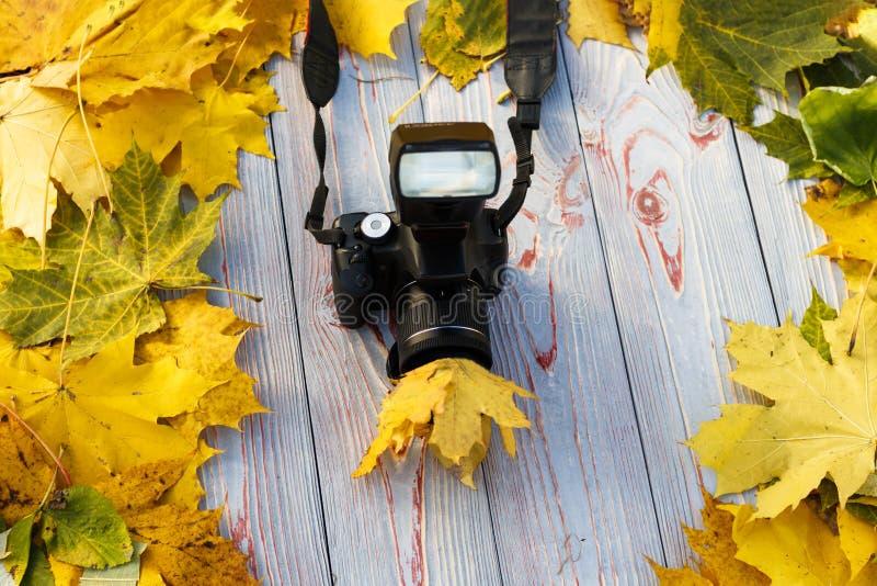 Листва осени желтая Деревянная предпосылка в ретро стиле камера, объектив в листве Конец-вверх стоковое фото