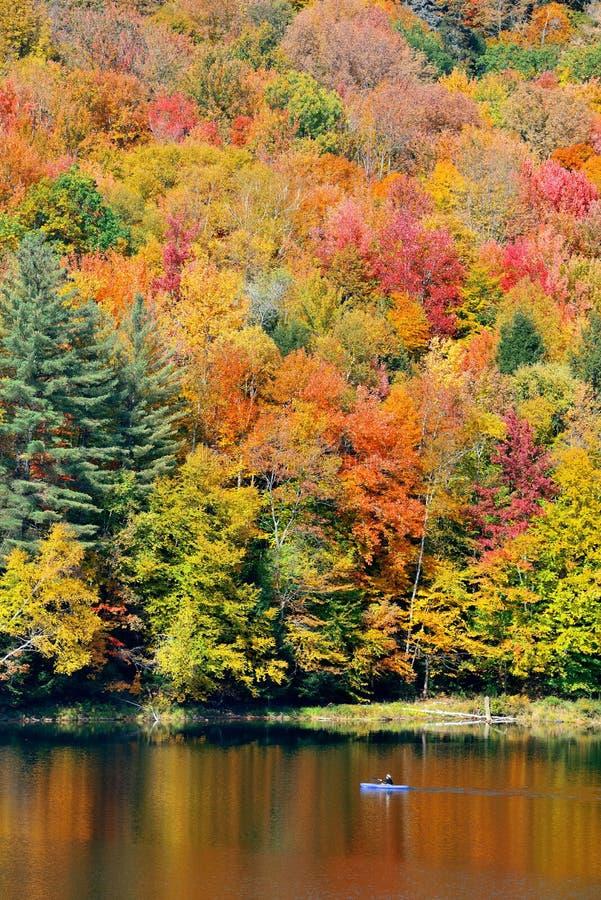 Листва осени озера стоковое изображение rf