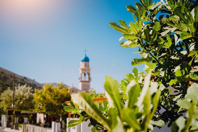 Листва смоковницы с местной башней церков и голубое небо в предпосылке Остров Kefalonia, Греция стоковое фото