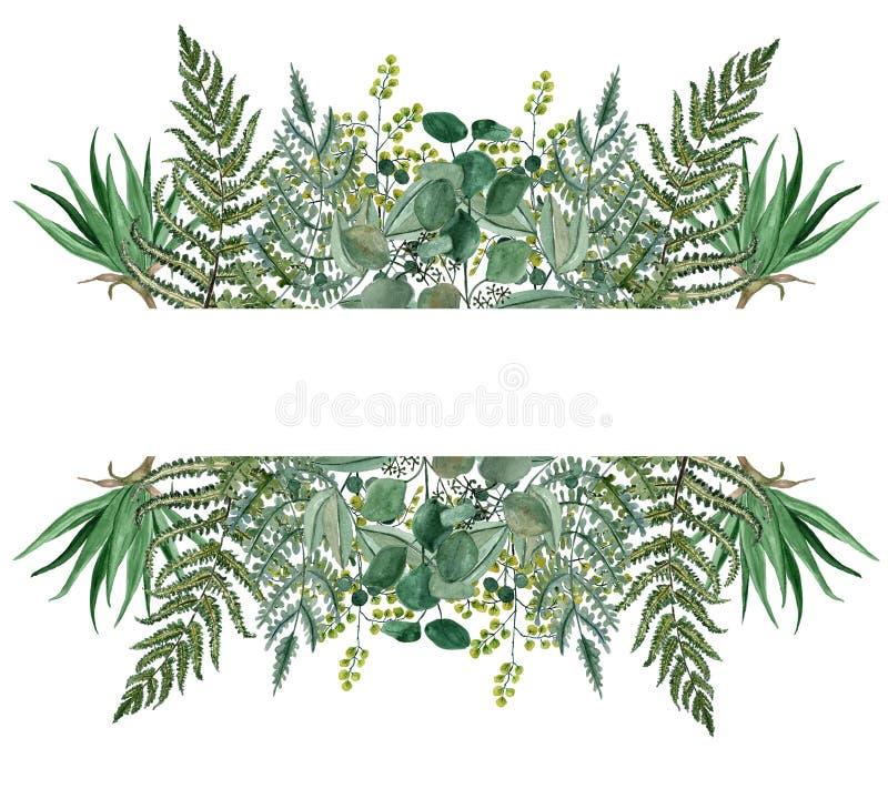 Листья акварели разделили рамку, руку покрашенная рамка завтрак-обедов бесплатная иллюстрация